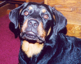 Ruby George 2006